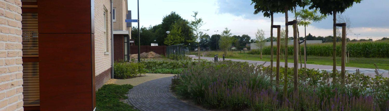 moderne-tuin-heesch-4