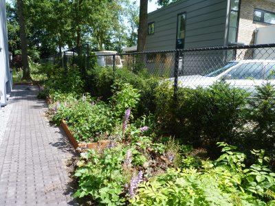 Natuurlijke tuin Cuijk